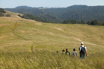 Hike.Sebastopol.meadow